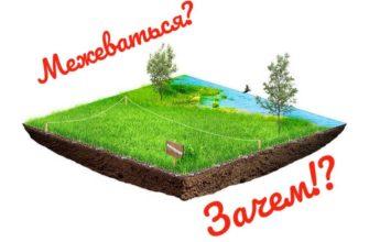 Зачем нужно межевание земельного участка